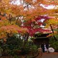旧東慶寺仏殿