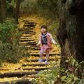 Photos: 銀杏と少女