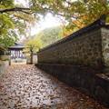 Photos: 韓国庭園塀