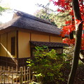 Photos: 晩秋の横笛庵