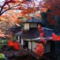 写真: 晩秋の聴秋閣