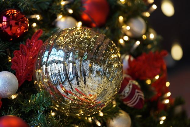 Photos: クリスマスツリー