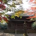 晩秋の旧東慶寺仏殿