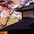 Photos: 晩秋の聴秋閣