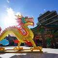 写真: 黄金の龍
