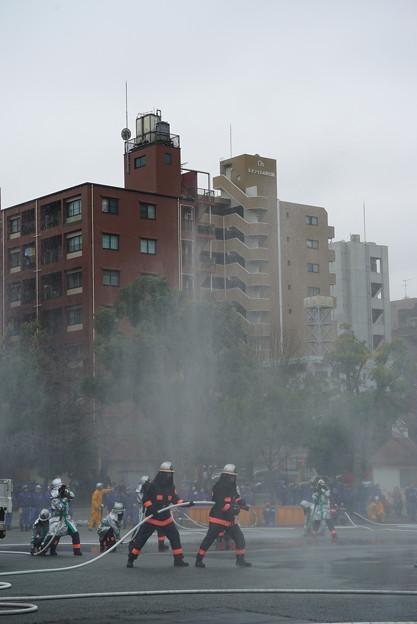 Photos: 平成31年消防出初式