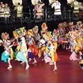 Photos: 青森ねぶた祭