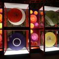 写真: 和傘の玉手箱