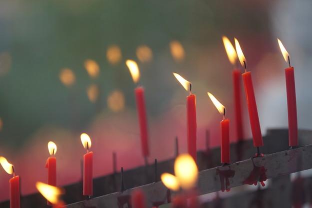 Photos: 赤い蝋燭