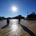 Photos: 午後の太陽