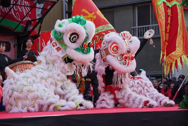 写真: 中国獅子舞