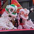Photos: 中国獅子舞