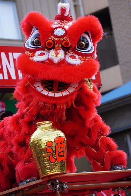 Photos: 獅子は酒が好き