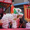 Photos: 中国の獅子
