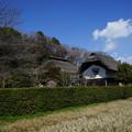 早春の横溝屋敷