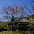 Photos: 鶴翔閣