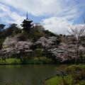 Photos: 三重塔