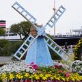 Photos: 風車のある花壇