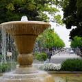 Photos: 春の横浜公園