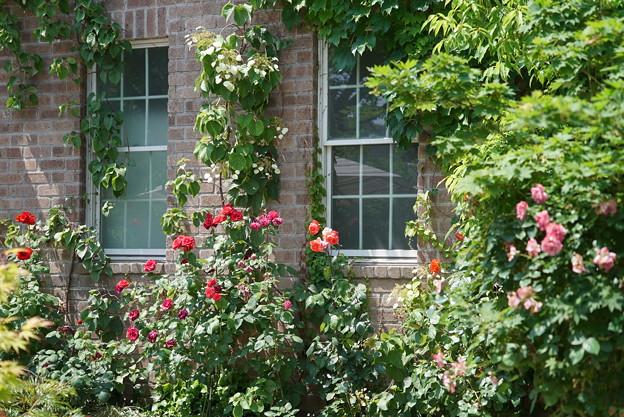 Photos: 窓のある風景