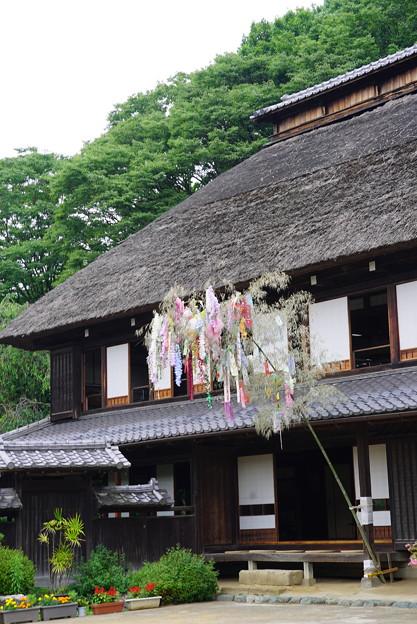 横溝屋敷の七夕