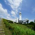 Photos: 夏のシンボルタワー