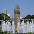 Photos: 山下公園