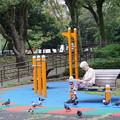 Photos: 鳩のいる公園