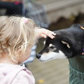 Photos: 犬と子供