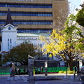 Photos: 横浜開港広場