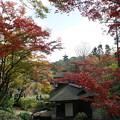 Photos: 聴秋閣と三重塔