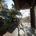 Photos: 初冬の月華殿