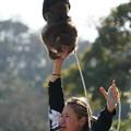 Photos: 猿まわし