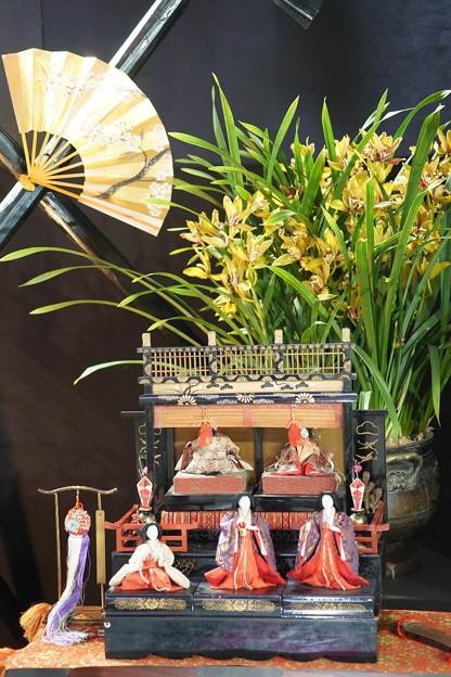 ひな祭りと蘭のディスプレイ