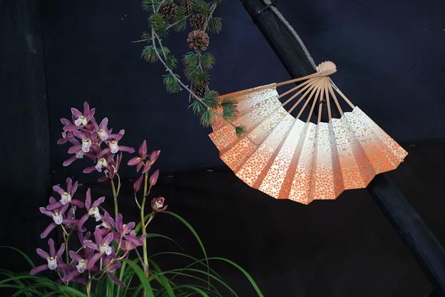 扇子と蘭のディスプレイ