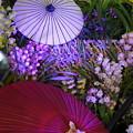 和傘と蘭のディスプレイ