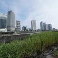 Photos: 高島水際線公園