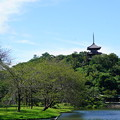 Photos: 初秋の三渓園