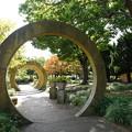 Photos: 秋の山下公園