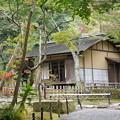 Photos: 秋の 春草蘆