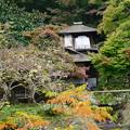 Photos: 秋の聴秋閣