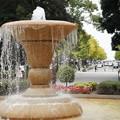 横浜公園の噴水