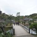 観心橋と三重塔