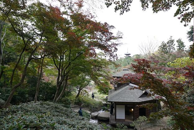 秋の聴秋閣