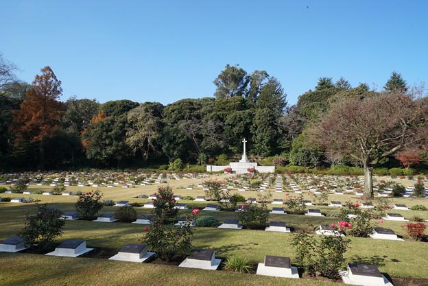 英連邦戦死者墓地