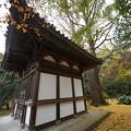 Photos: 旧天瑞寺寿塔覆堂
