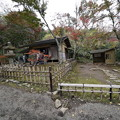 Photos: 初冬の春草蘆