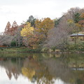 Photos: 初冬の三ッ池公園
