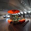 Photos: 大さん橋国際客船ターミナル