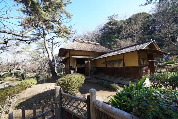 Photos: 冬の横笛庵